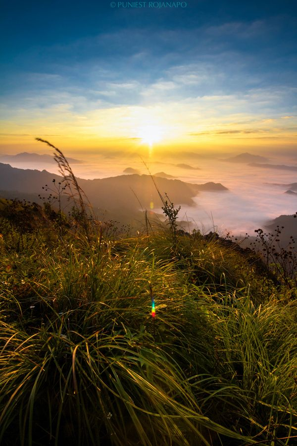 Phu Chi Fa (ภูชี้ฟ้า)  Chiang Rai, Thailand