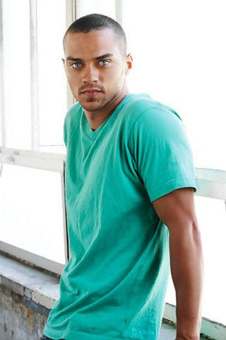 "Jesse Williams. In the words of my 13yr old daughter the first time she saw him on tv...""oh my god, like, that guy is amazing! ""  Why yes daughter,  yes he is! Lol"
