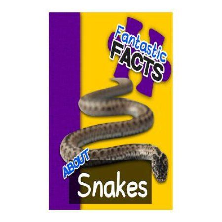 Fantastic Facts about Snakes: Illustrated Fun Learning for Kids
