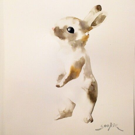 Rabbit illustration by Sookie Shen