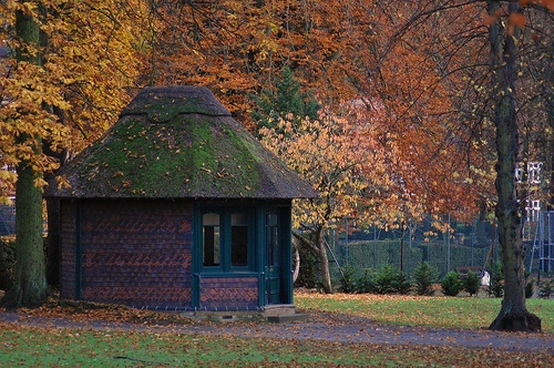 Thatched hut by the tennis courts in Luton, England