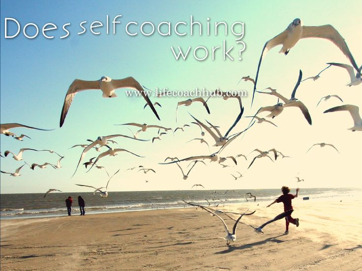 how to work with a business coach