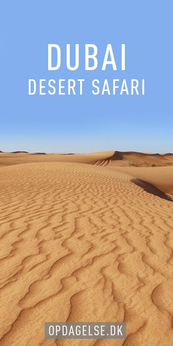 Desert Safari in Dubai --- The post is in danish. Choose your own language in the bottom of the right sidebar