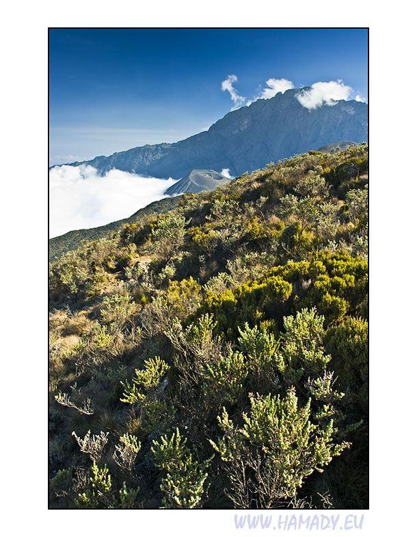Mount Meru, Arusha, Tanzania Copyright: Jan Hamadak