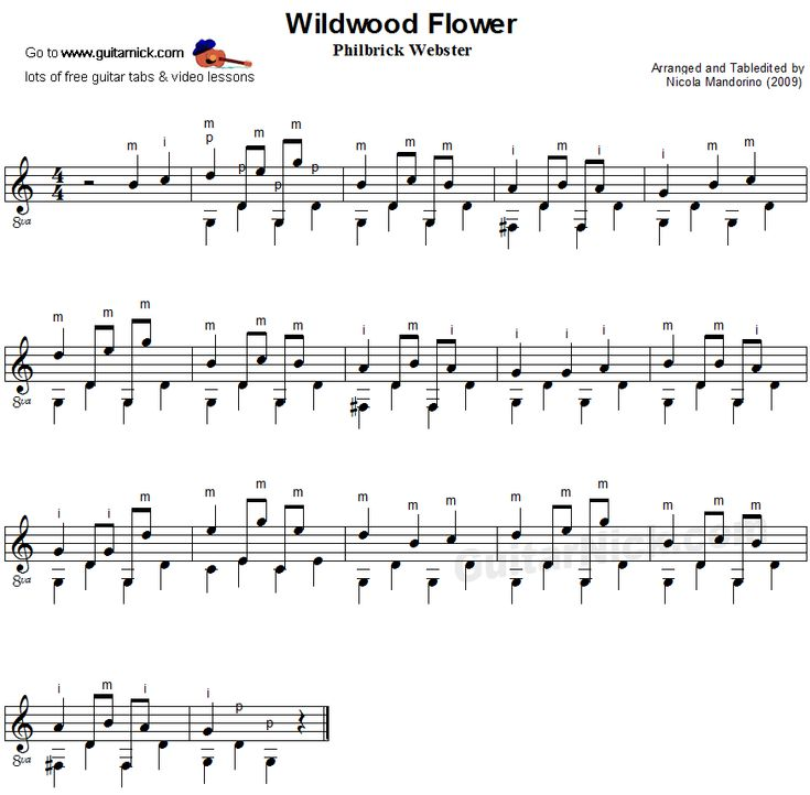 Guitar Chords For Wildwood Flower Image collections - basic guitar ...