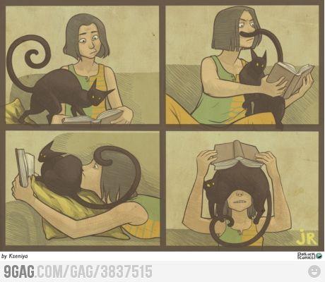 All cats do that..: Book Worth, Funny Cat, My Life, So True, Crazy Cat, Cat Ladies, Cat Lovers, Black Cat, True Stories