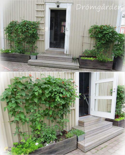 vakre kasser og plantestøtter
