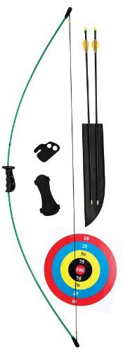 Bear Archery Crusader Bow Set (Right Hand/Left Hand) Bear Archery http://www.amazon.com/dp/B000C5D3RK/ref=cm_sw_r_pi_dp_5YPBub0XYPMNK