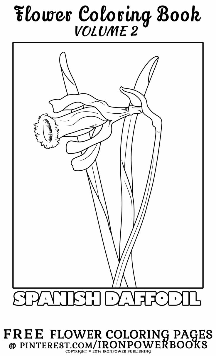 free commercial use coloring pages - photo#10