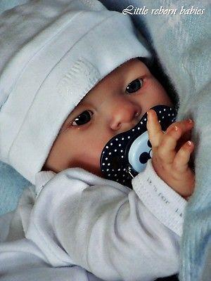 A.D.O.R.A.B.L.E CHUBBY BABY BOY REBORN DOLL.NO RESERVE!!