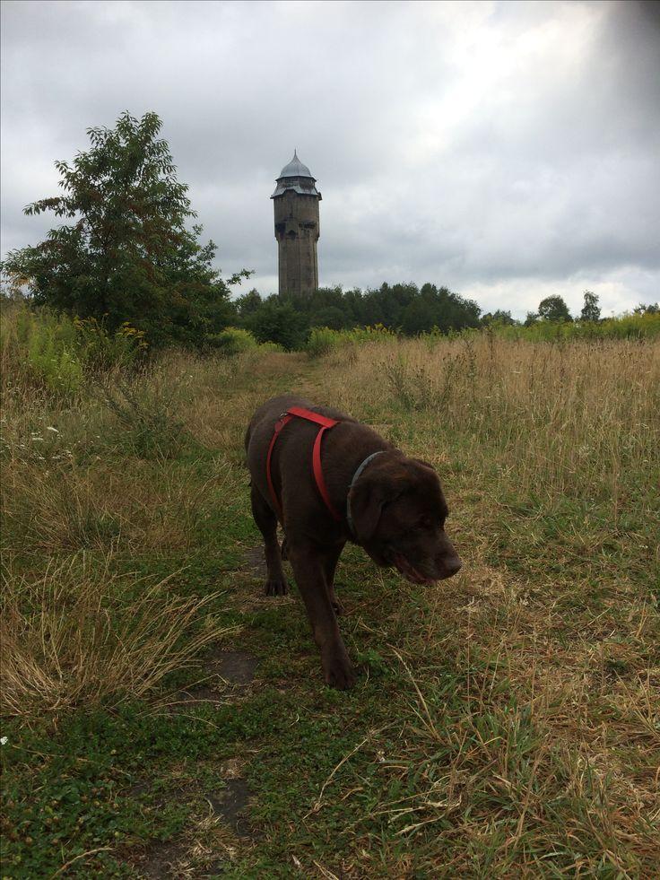 Jedna wieża zaliczona ;)