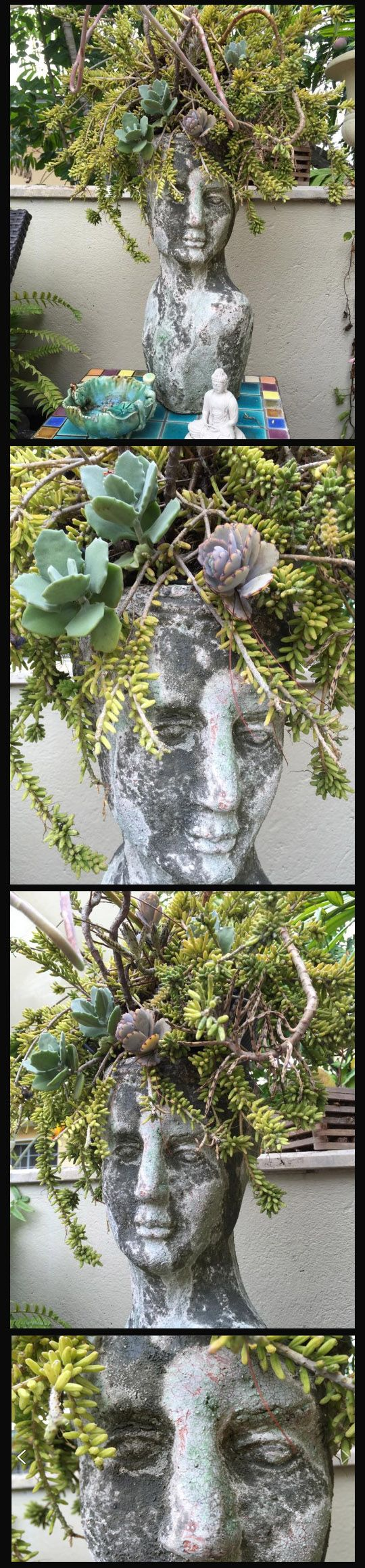 Unusual Planters For Sale Part - 39: Not Only Did This Creative Person Fill The Planter With Unusual