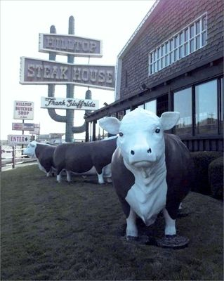 Hilltop Steak House in Saugus, Mass. Low the cows out front.