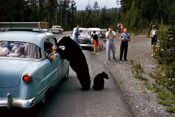 Guess they did not post as many WARNING signs during the 50's. Awesome old photo