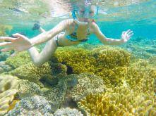 Apo Island, Dumaguete, Negros #summer #beach #philippines