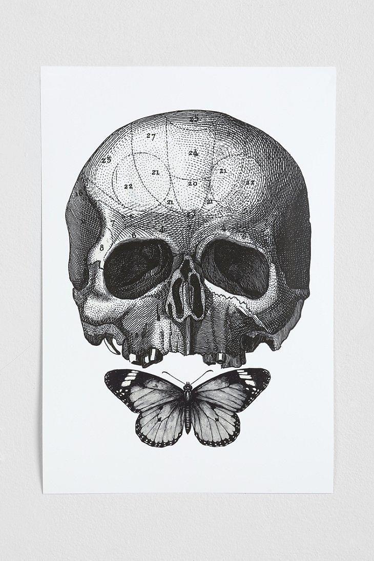 Cirque D'Art Skull & Butterfly Art Print #urbanoutfitters
