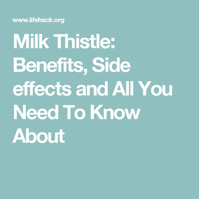 Milk Thistle: Benefits, Side effects and All You Need To Know About