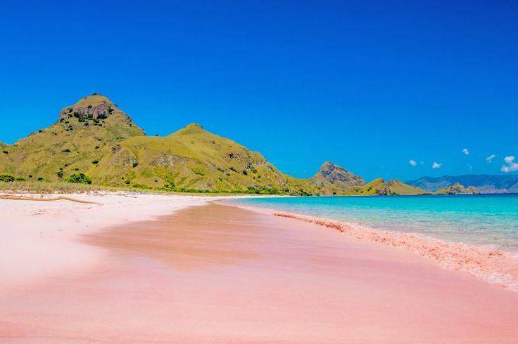 Pink Beach, East Nusa Tenggara indonesia