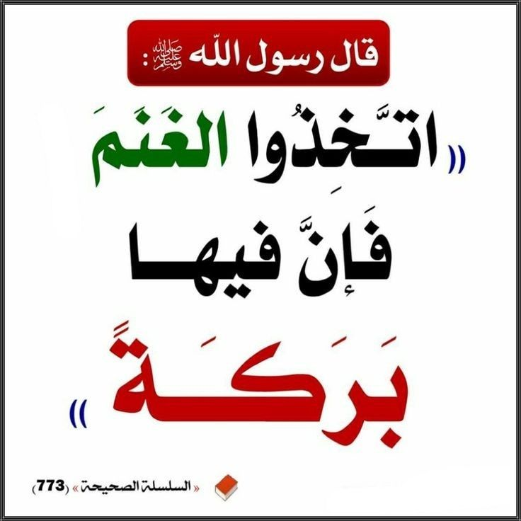 Pin By ام ماريا On أ حــاديث In 2021 Islamic Phrases Islamic Quotes Words Quotes