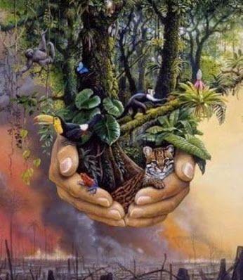 """¡FELIZ DÍA MUNDIAL DEL MEDIO AMBIENTE!!! En Hijas de la Tierra celebramos el día del Medio ambiente, con el mensaje del Sabio Hermano Orangután. Darnos cuenta que el medio ambiente como todo aquí y ahora , forma parte de nosotros. """"Pertenecer a algo es ser parte de él, no es posesión. Pertenecer es arraigarse a las entrañas de la tierra, hundirse entre las raíces del árbol, enlazar tus manos y las mías. Nos pertenecemos porque nos fundimos, nos enlazamos, nos pertenecemos porque somos lo…"""
