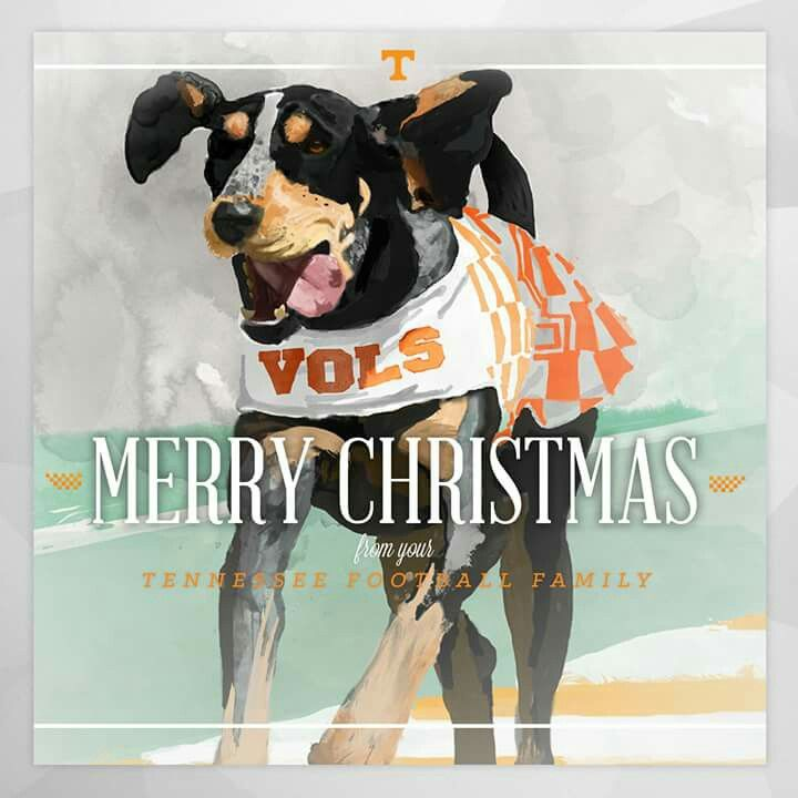 35 Best Images About Rocky Top On Pinterest Tennessee Football And Merry Christmas