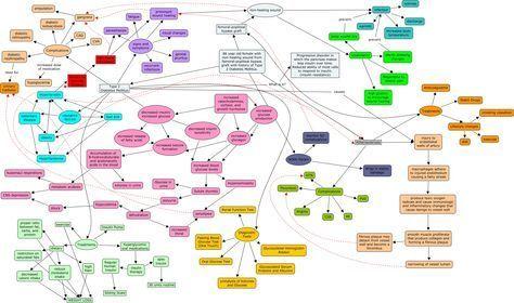 Diabetes Mellitus Type 2 Concept Map With Detail Nursing Shizbits
