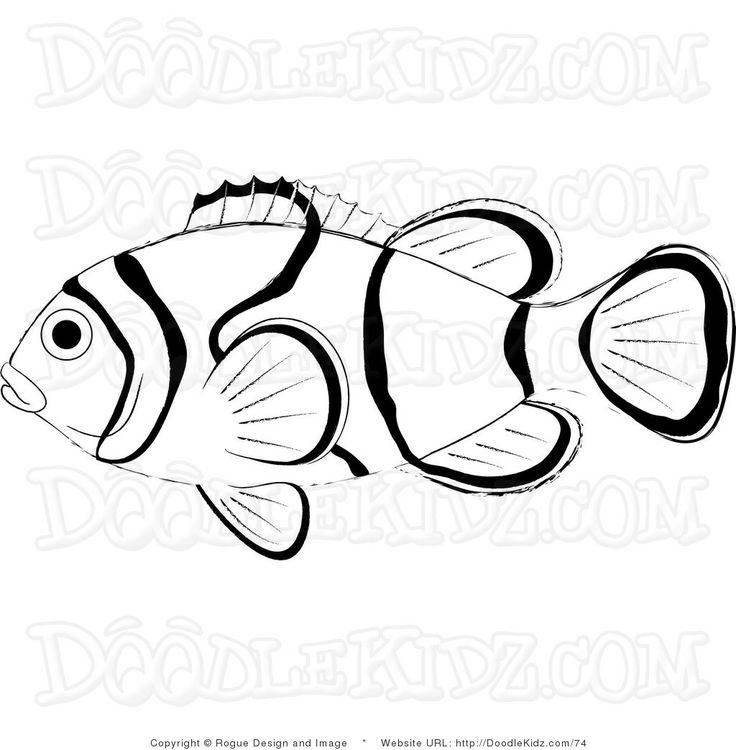 Free Printable Rabbit Coloring Pages For Kids Clown Fish