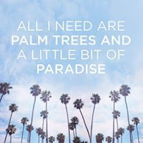 The Beach and Palm Trees !  Yes !