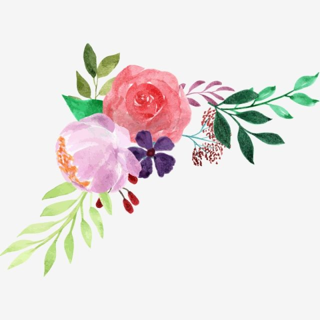 Watercolor Floral Bouquet Flowers Plant Watercolor Png