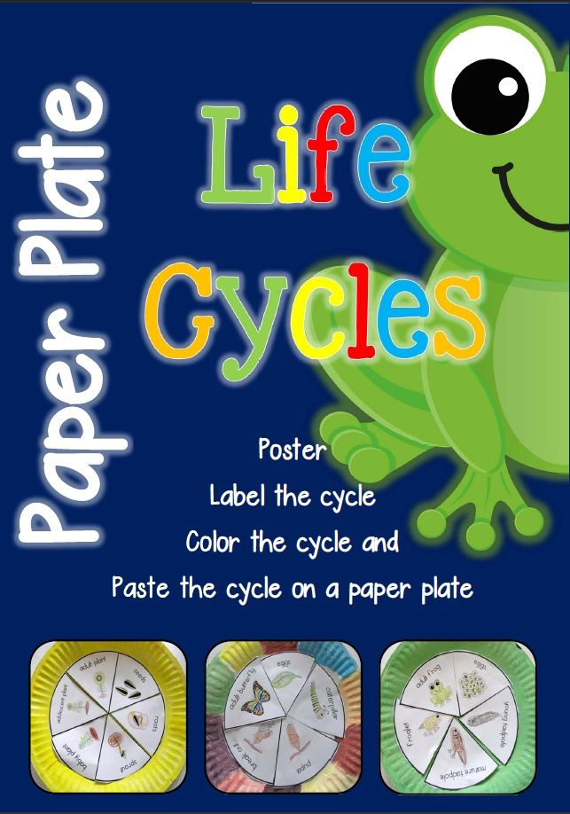 Paper Plate Life Cycles, Frog, Pumpkin, Apple, Sunflower, Plant, Ant, Butterfly, Watermelon Salmon and Sea Turtle  A total of 10 life cycle activities to supplement your science program.$  http://www.teacherspayteachers.com/Product/Paper-Plate-Life-Cycles-Frog-Pumpkin-Apple-Sunflower-and-more-877497