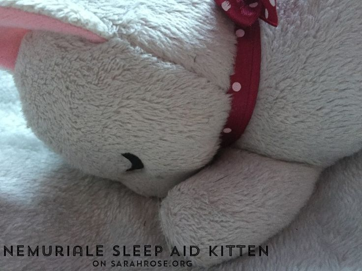 Trouble #sleeping or suffer with #anxiety? This sleep aid kitten might just be for you! on sarahrose.org