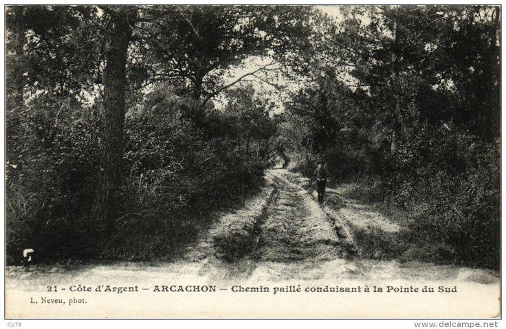 Côte d'Argent - ARCACHON - Chemin paillé conduisant à la Pointe du Sud - Delcampe.net