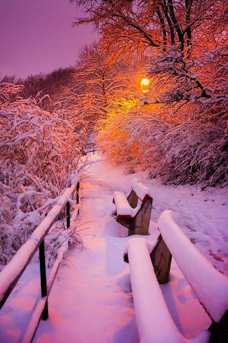 Te esperé tanto tiempo, hoy la nieve cae, ¿Dónde he de sentarme a esperarte ahora?