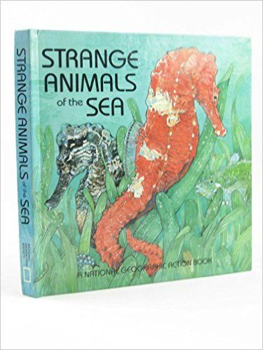 Strange Animals of the Sea (National Geographic Action Book) - Căutare Google