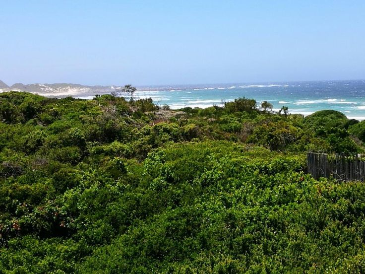 4 John Booysen place Cape St francis for sale. Views to Sharks point