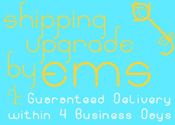 New to GoldieSupplies on Etsy: 23USD Upgrade to Expedited EMS Shipping - to US Addresses only - 4 Business Day Delivery (23.00 USD)