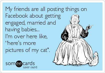 "Funny Ecard: My friends are all posting things on Facebook about getting engaged, married and having babies… I'm over here like, ""here's more pictures of my cat""."