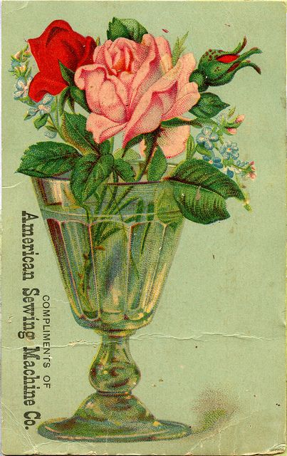 American Sewing Machine Co. Trade Card