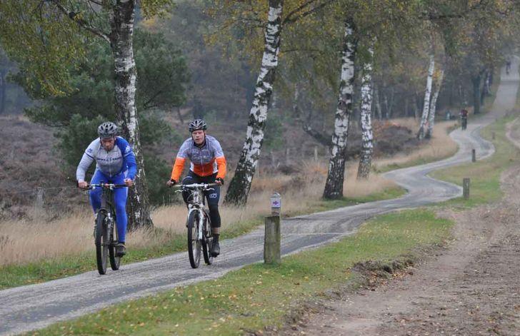 Bent u sportief? Dan zit u hier goed het vakantiepark ligt onder aan de voet van de Holterberg. Wie durft de uitdaging aan om de hele berg over te gaan?