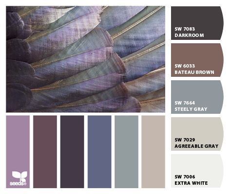 Feather inspired colors / Paint colors from Sherwin-Williams / SW Darkroom, SW Bateau Brown, SW Steely Gray, SW Agreeable Gray / SW Extra White