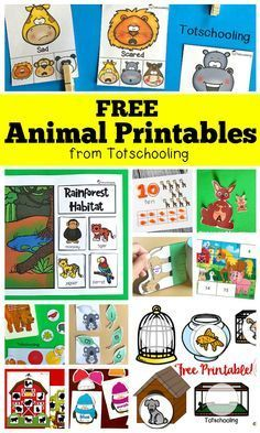 FREE Animal Printables for Preschool