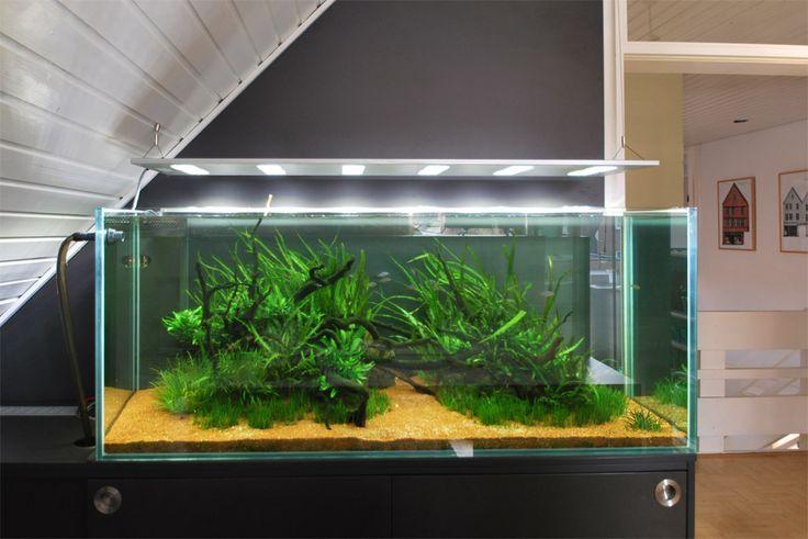 led naturaquarium love these lights aquarium pinterest. Black Bedroom Furniture Sets. Home Design Ideas