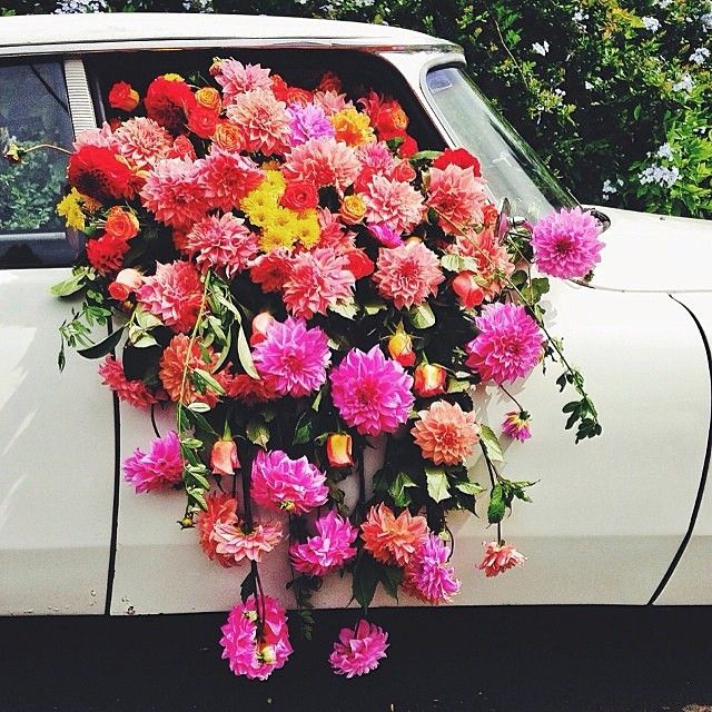 Satur-day dreaming  florals by @catelockebotanica + photo by @foodwinedine #FloralHunters #ForageLikeABoss