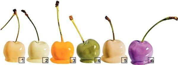 1. O Látex Maxx de PVA premium (ref. C032) promete rendimento 40% a mais do que as versões da sua categoria. Suvinil, R$ 39.2. Esmalte Seca Fácil (marfim). Hydronorth, R$ 45.3. Acrílico premium PintaTudo para cobrir alvenaria, madeira e metal. Tintas Renner, R$ 68.4. A acrílica premium Polycril Veludo (verde-incenso) pode ser diluída em até 50%. Universo Tintas, R$ 34.5. Acrílica standard Rende Muito (vanilla). Segundo o fabricante, cobre 20% a mais do que as tintas semelhantes. Tintas…