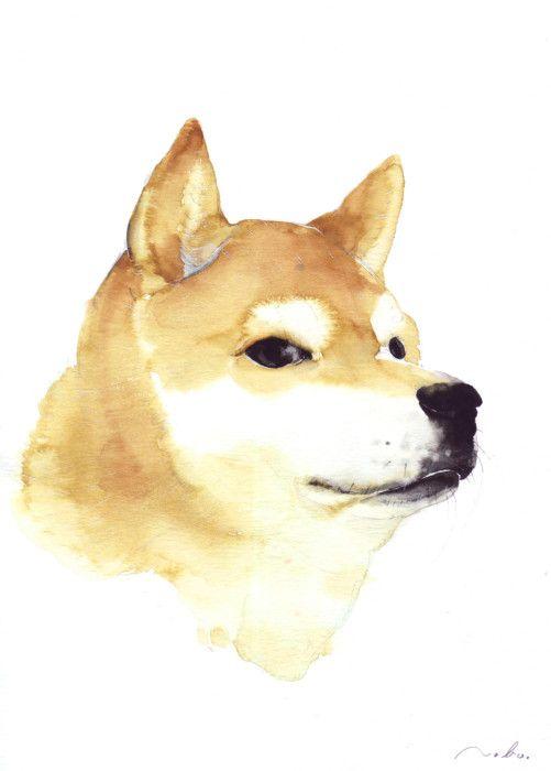 Japanese Shiba - dog Watercolor