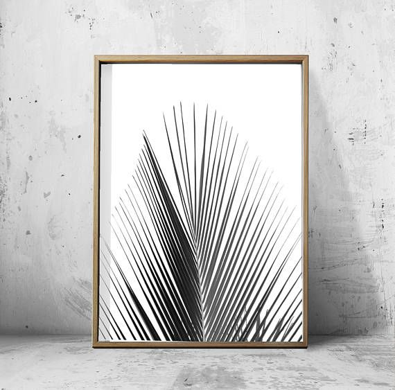 Black and White Palm Print Botanical Poster Tropical Foliage