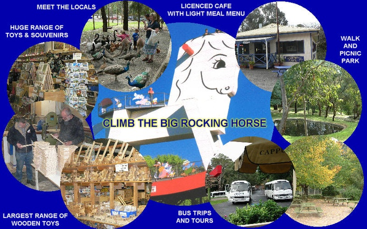 The Big Rocking Horse ~ climb the horse, buy a toy or feed the kangaroos and animals in the sanctuary.