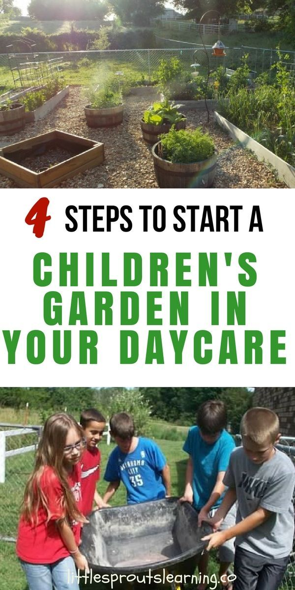 4 Steps to Start a Children\'s Garden in Your Daycare   tree hugging ...