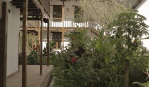 El Albergue's beautiful garden