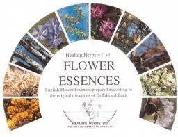 profumi a i fiori di bach